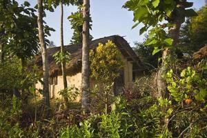 traditioneel terai-huis in het midden van de jungle, bardia, népal foto