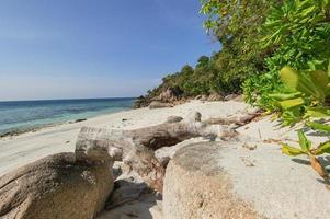 zee en de jungle op tarutao national marine park foto
