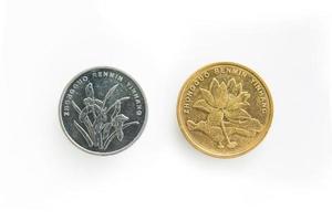 achterkant van munt voor 1 en 5 jiao in China foto