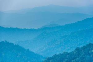 de jungle bij Kaengkrachan National Park in Thailand. foto