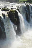 prachtige natuur wild jungle landschap regenwoud iguazu watervallen argentinië