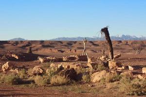 woestijn goed foto