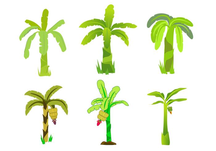 Gratis Bananenboom Vector