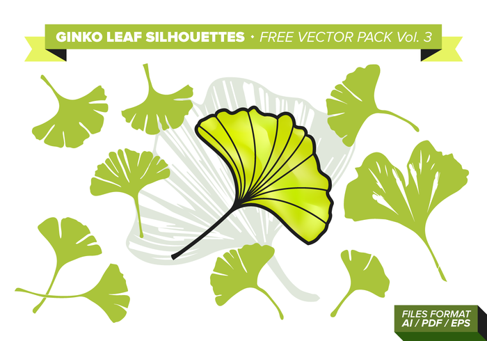 Ginko Leaf Gratis Vector Pack Vol. 3