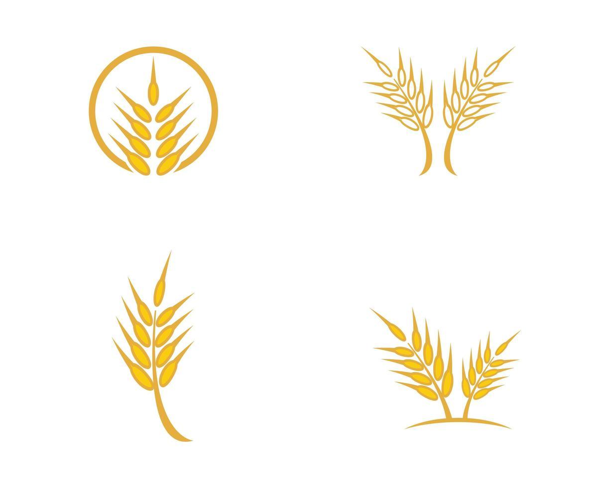 tarwe pictogramserie vector
