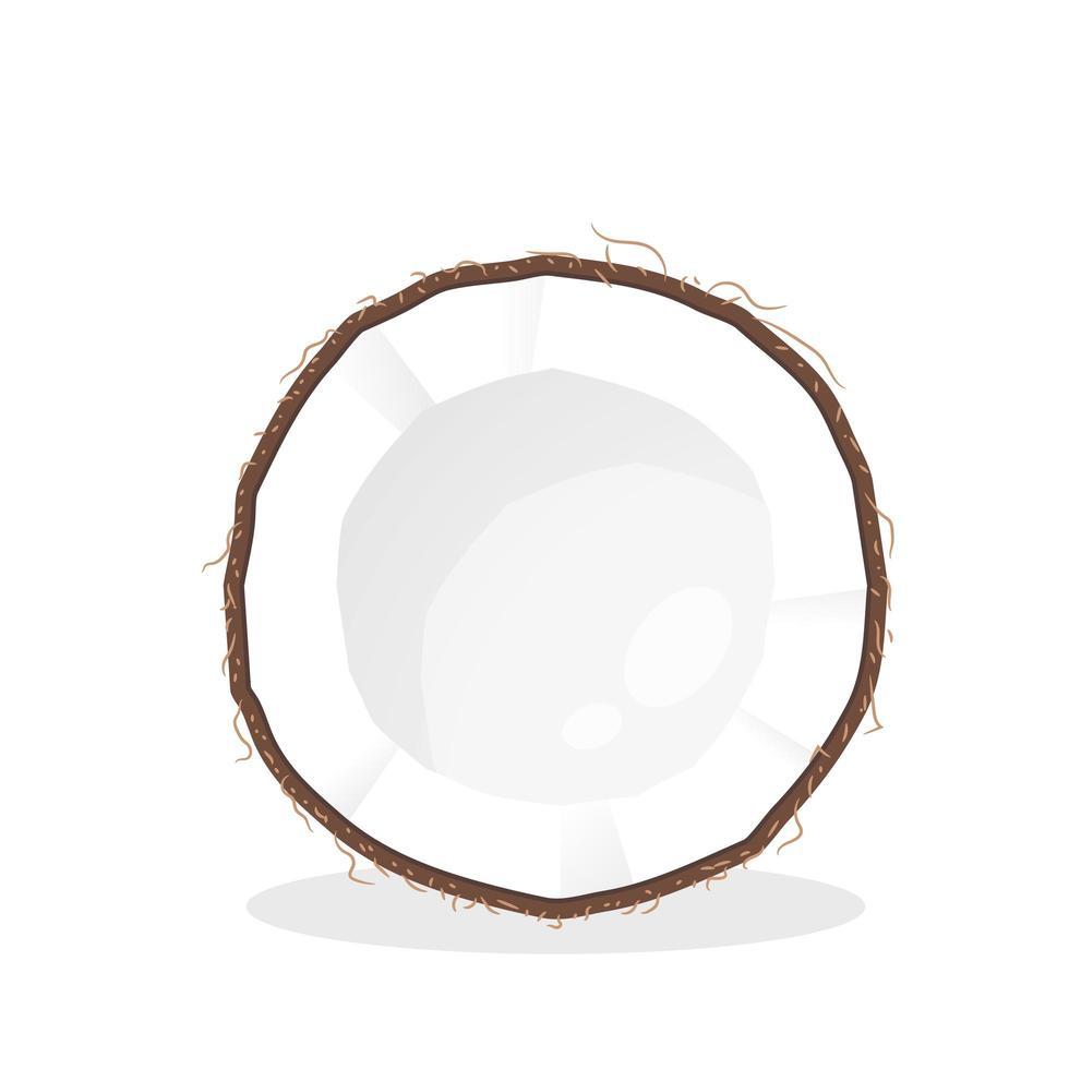 kokos in tweeën gesneden vector