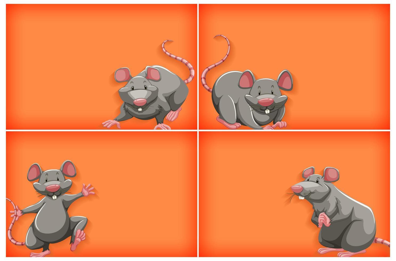 oranje achtergrond instellen met grijze muis vector