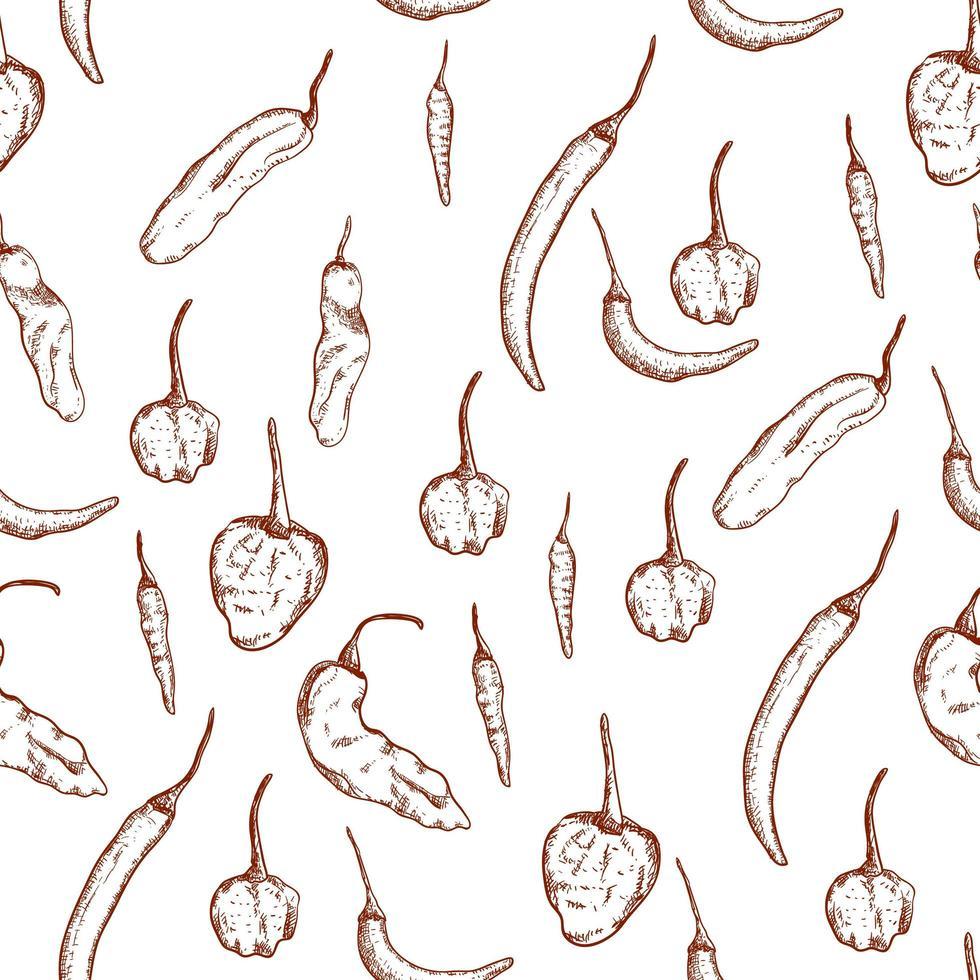 chili peper hand getekend naadloze patroon vector