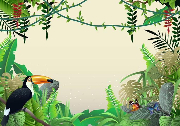 Mooie Illustraties Van Tropische Jungle En Liana vector