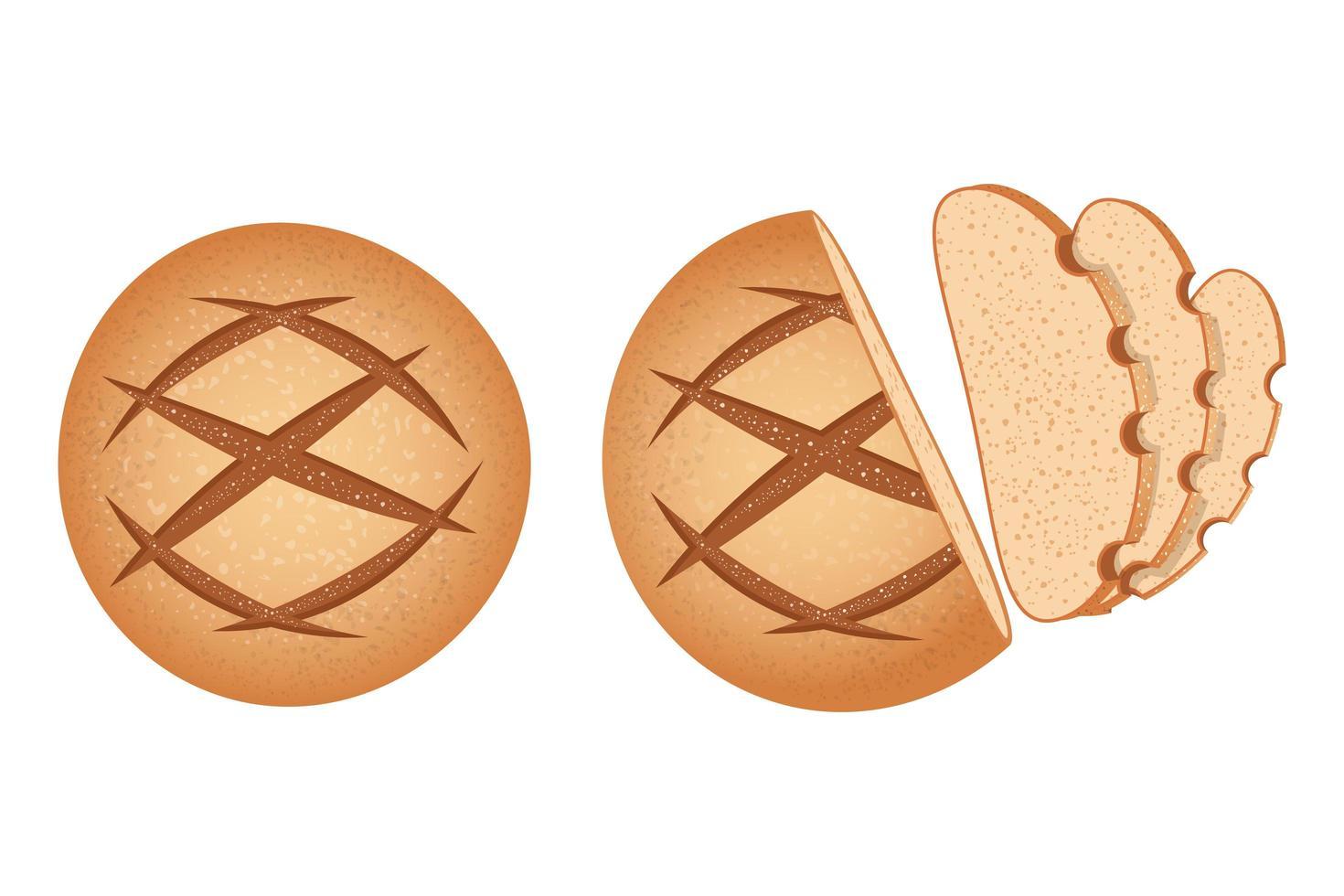 zelfgemaakte ronde broodset vector