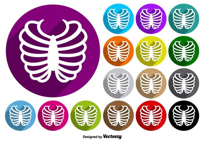 Rib Cage Icon Kleurrijke Knoppen Vector Set