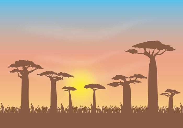 Gratis Baobab Vector Illustratie