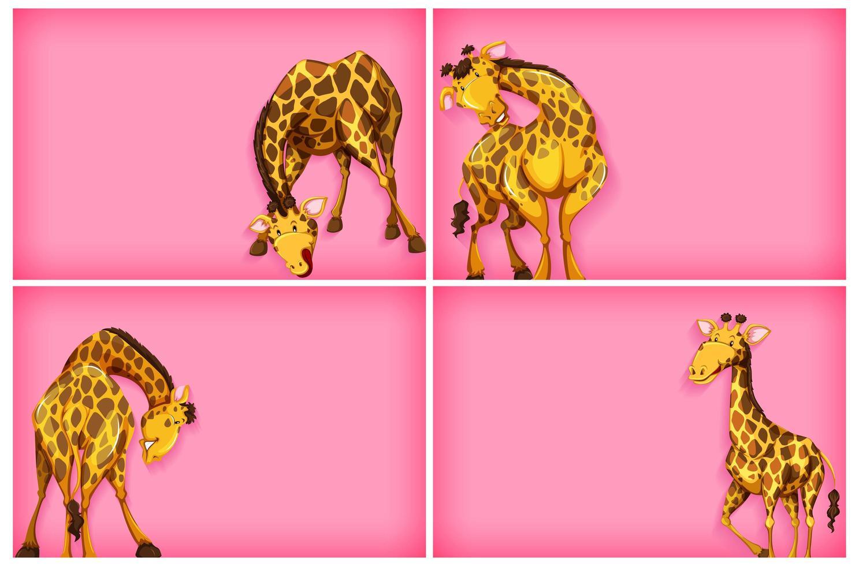 sjabloonontwerp met roze muur en giraffen vector
