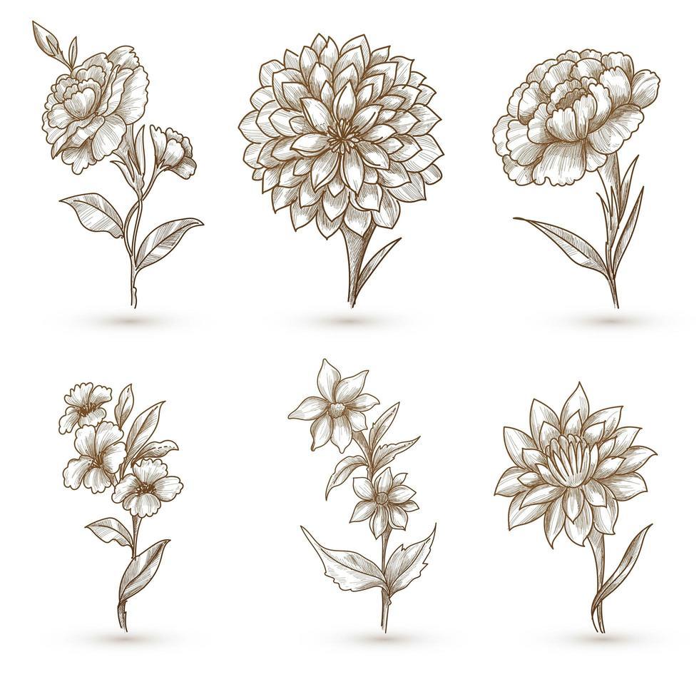 prachtige artistieke bloemen schets set vector