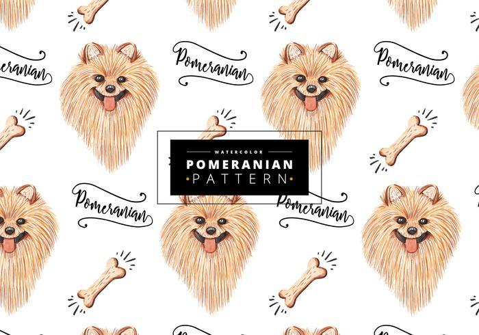 Gratis Pomeranisch Patroon vector
