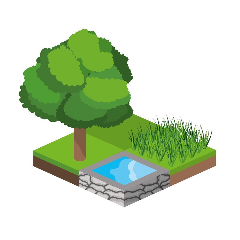 isometrische bomen en waterbronpictogram vector