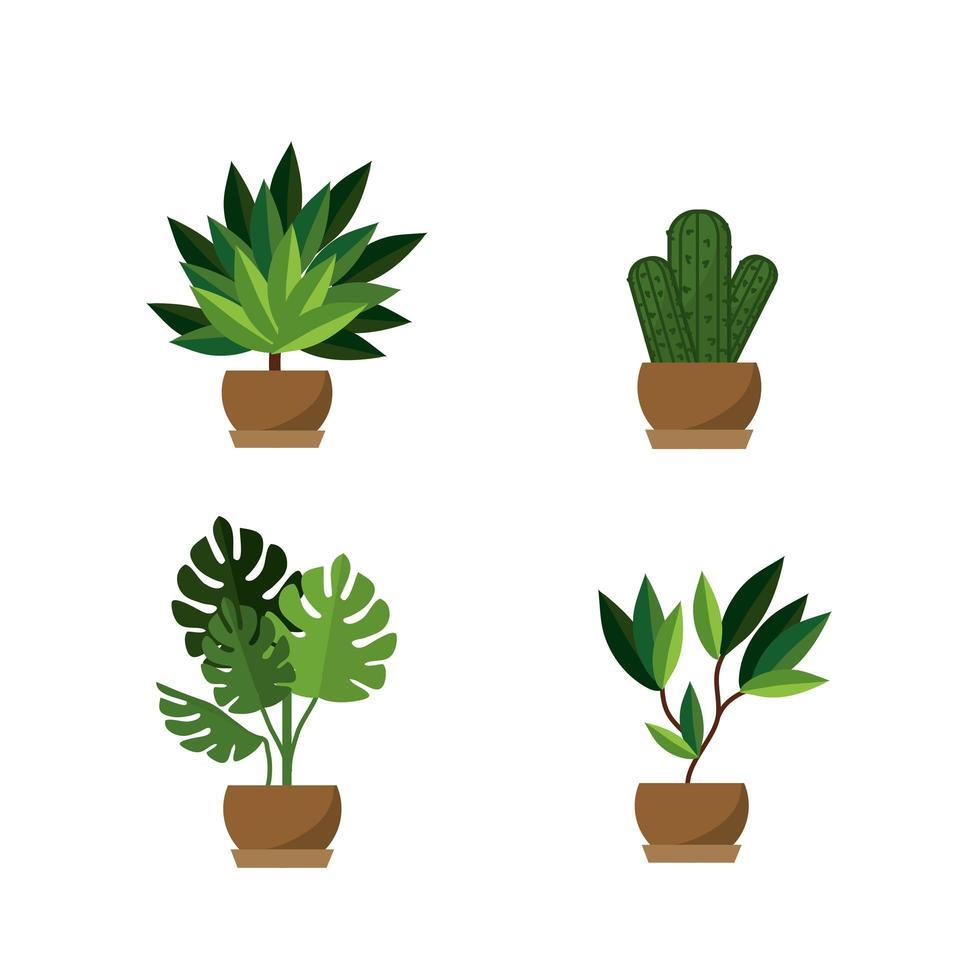potplanten pictogramserie vector
