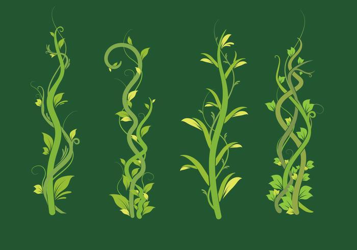 Liana groen blad vector pack