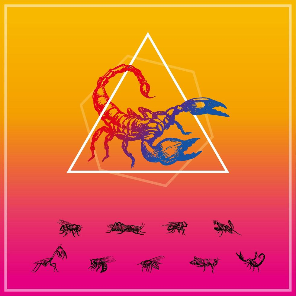insect silhouet set vector