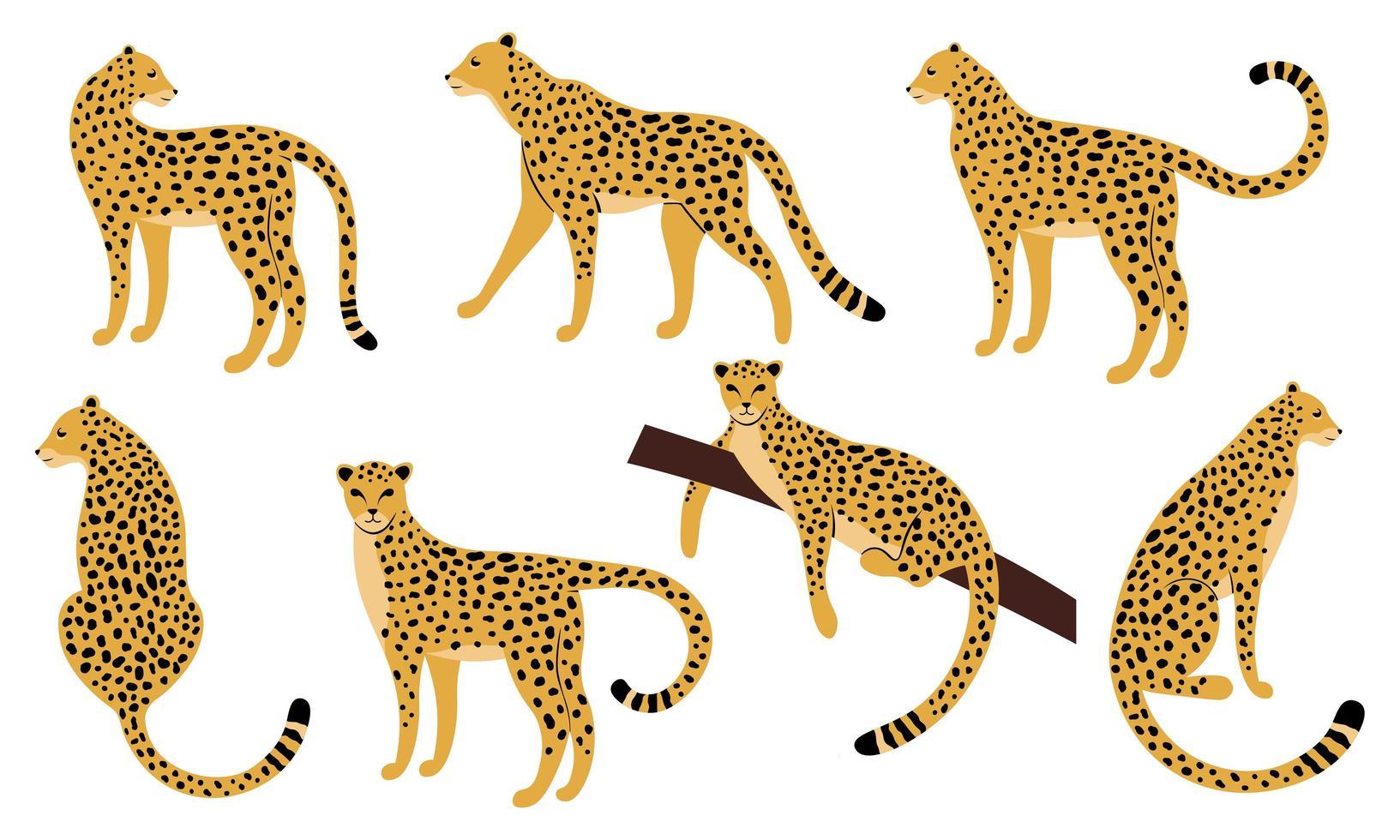 set hand getrokken ontwerpen van luipaarden vector