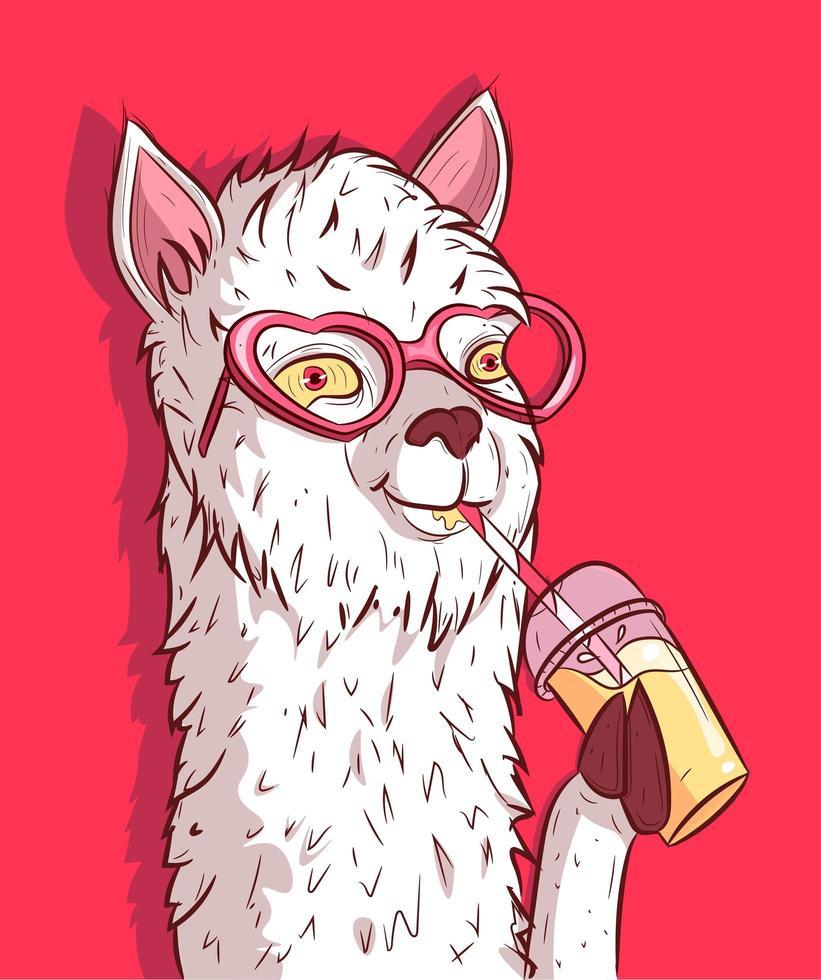 witte lama met hartvormige zonnebril limonade drinken vector