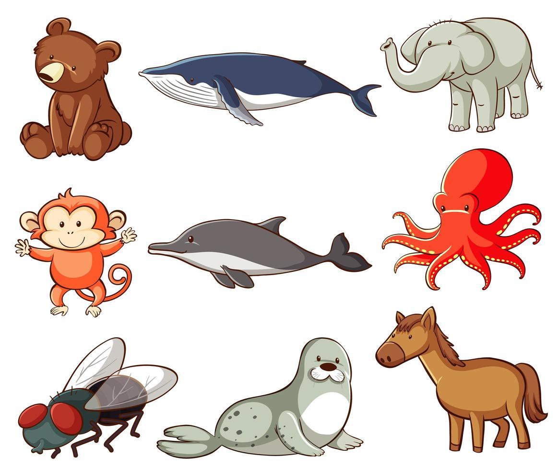 set van dieren in het wild met veel soorten dieren vector