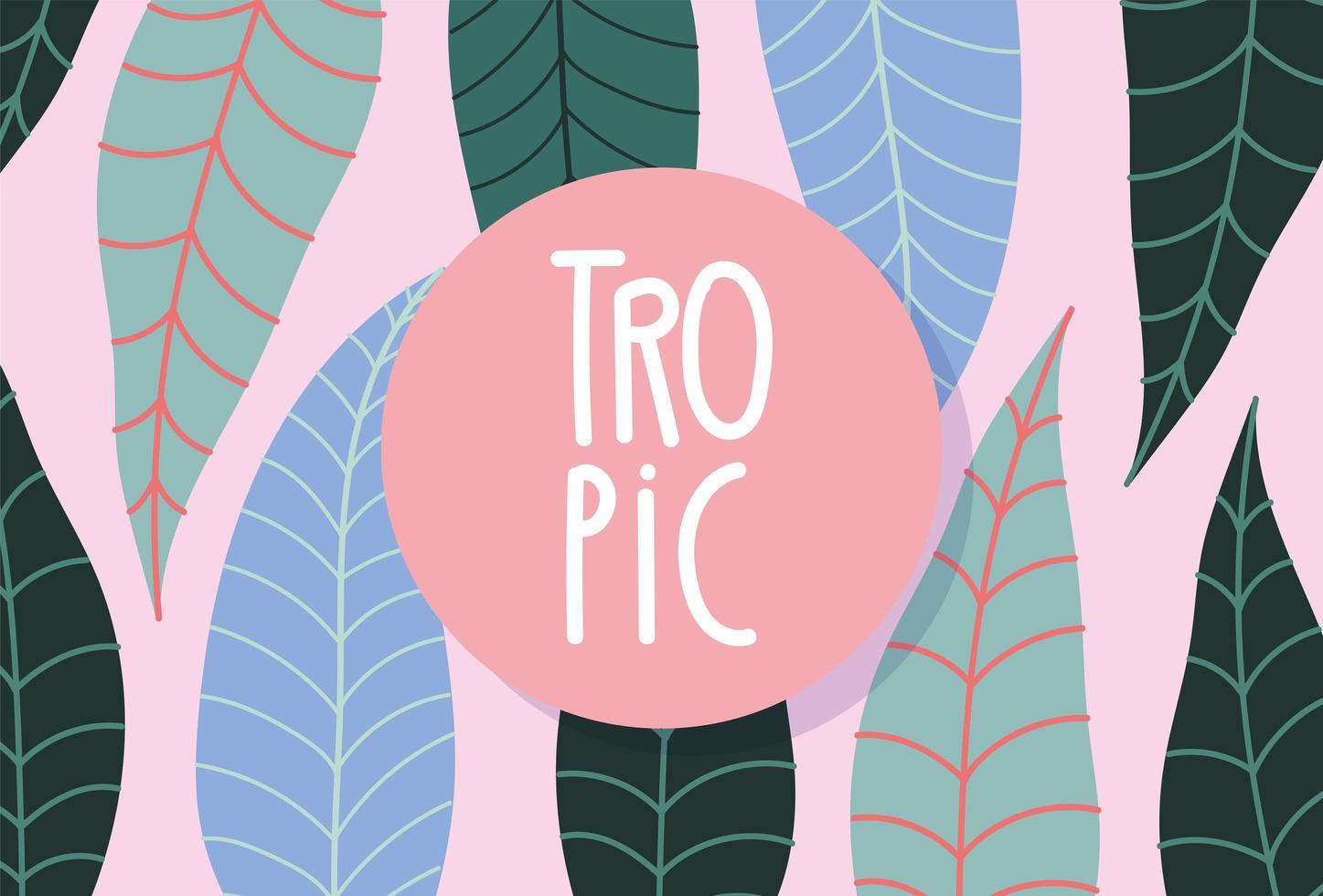 kleurrijke tropische gebladertebanner vector