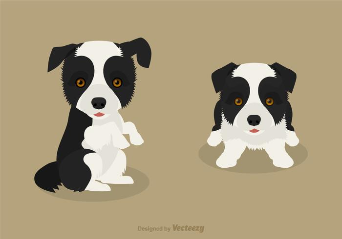 Gratis Vector Border Collie Puppies