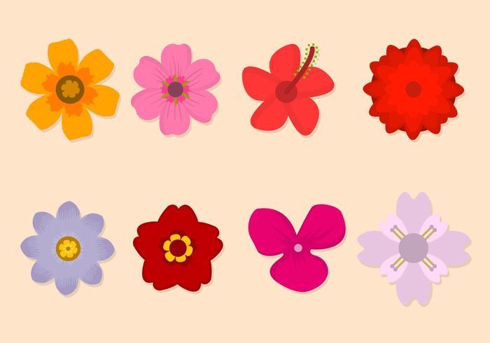 Gratis Flower Vector Collection
