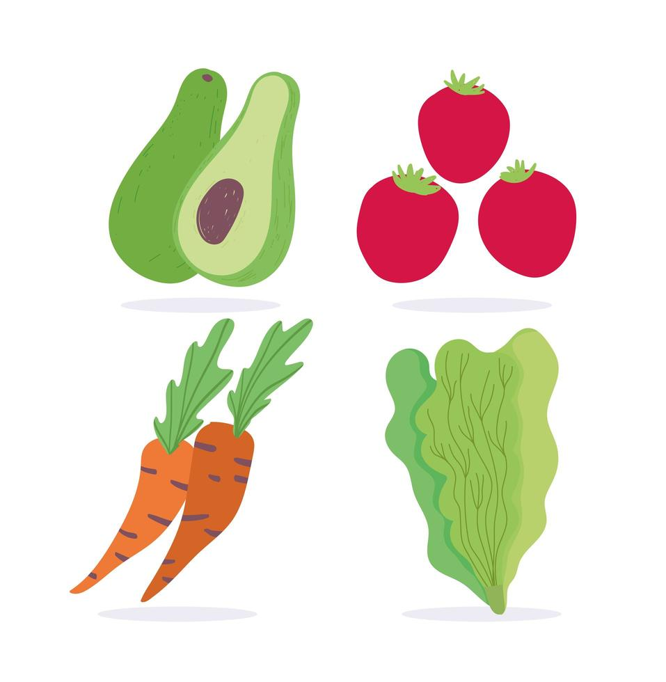 wortelen, avocado, sla en tomaten vector