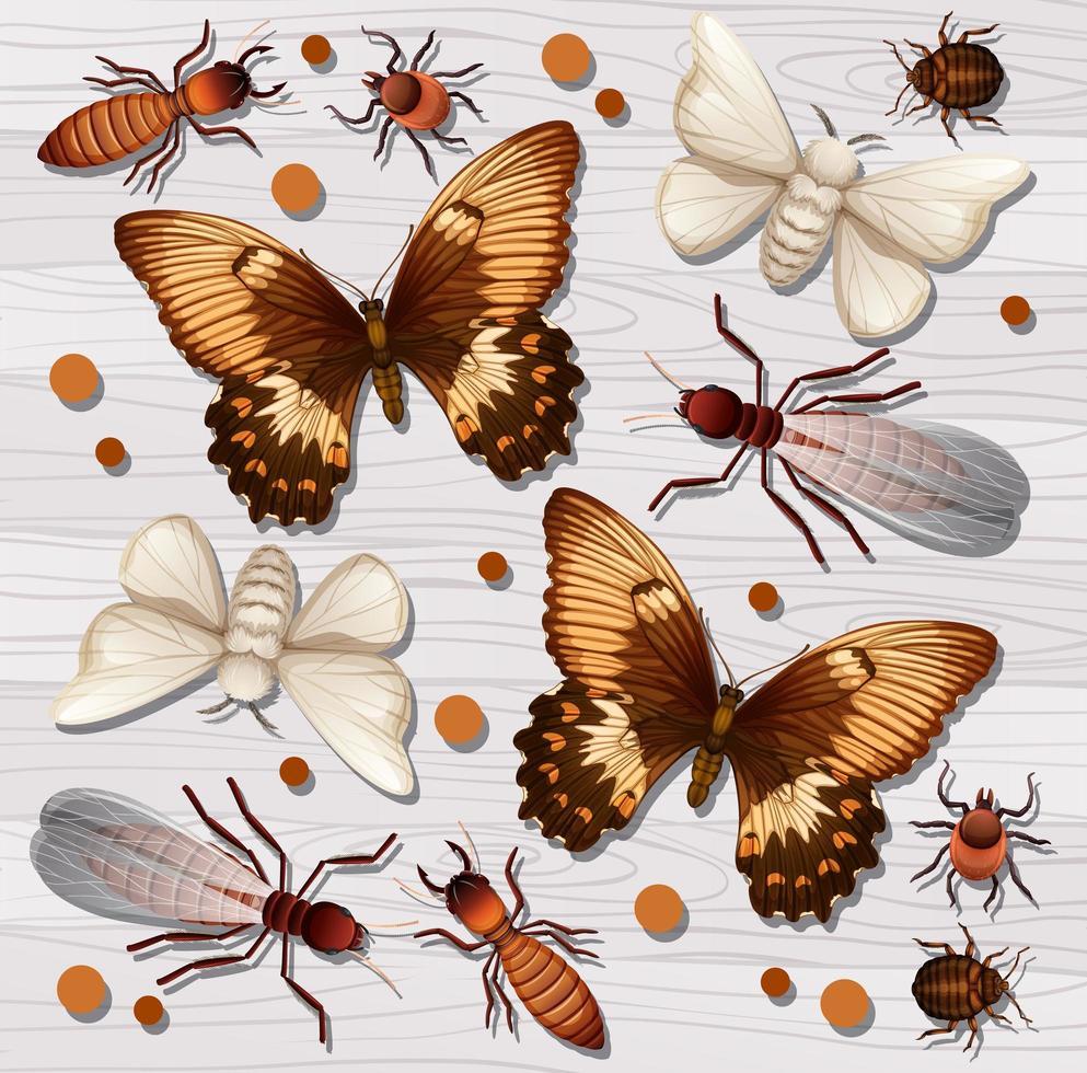 set van verschillende insecten op wit houten vector