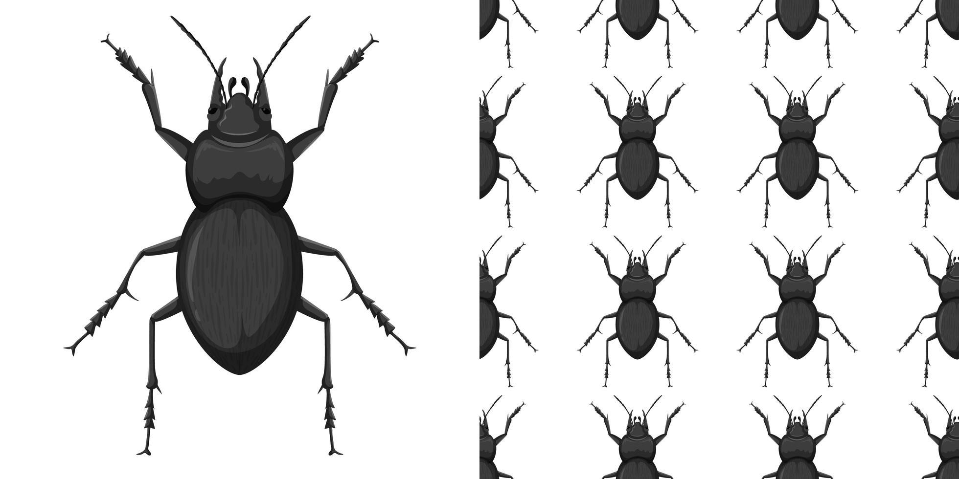 carabidae en patroon geïsoleerd op wit vector