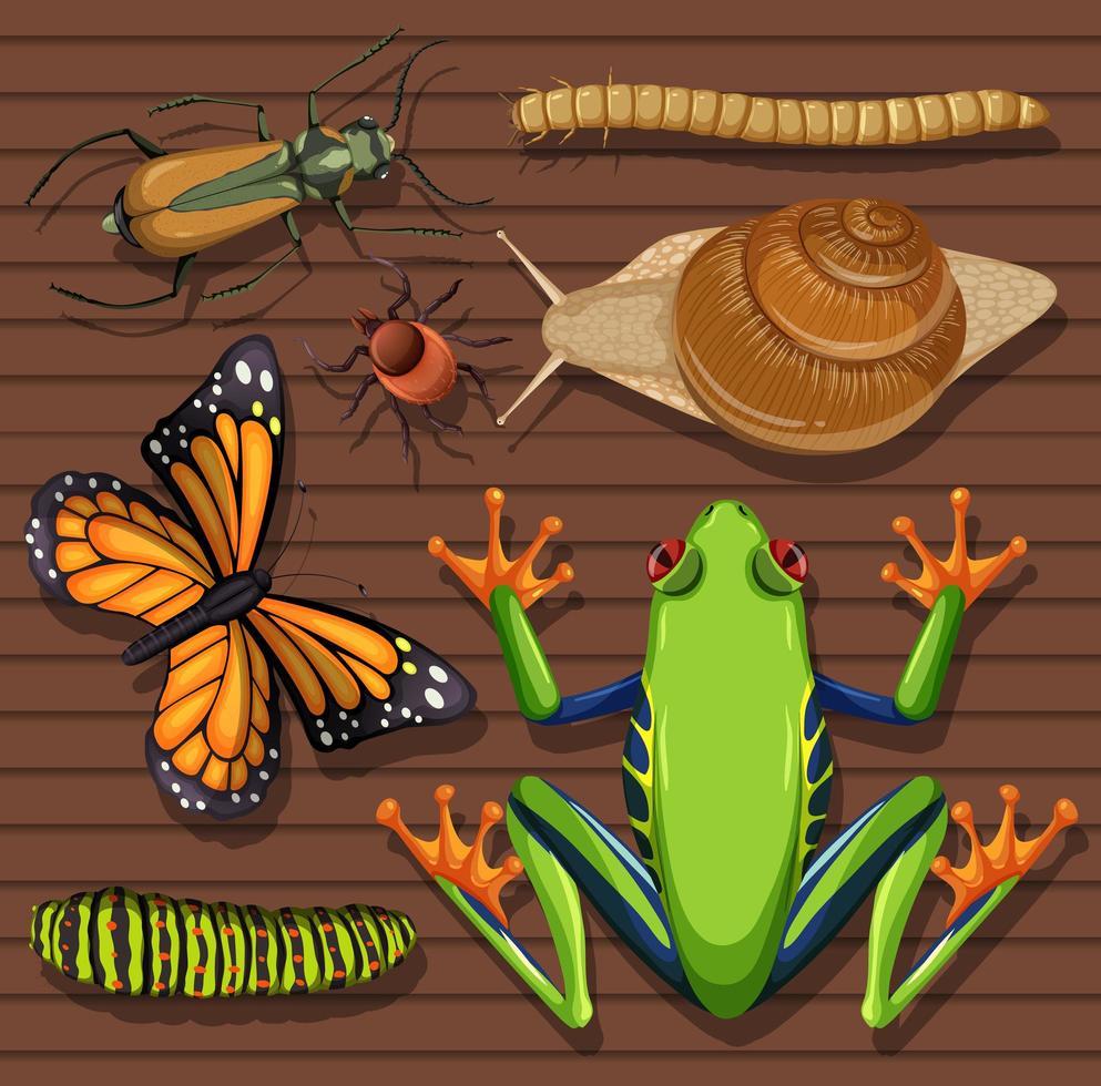 set van verschillende insecten op houten achtergrond vector