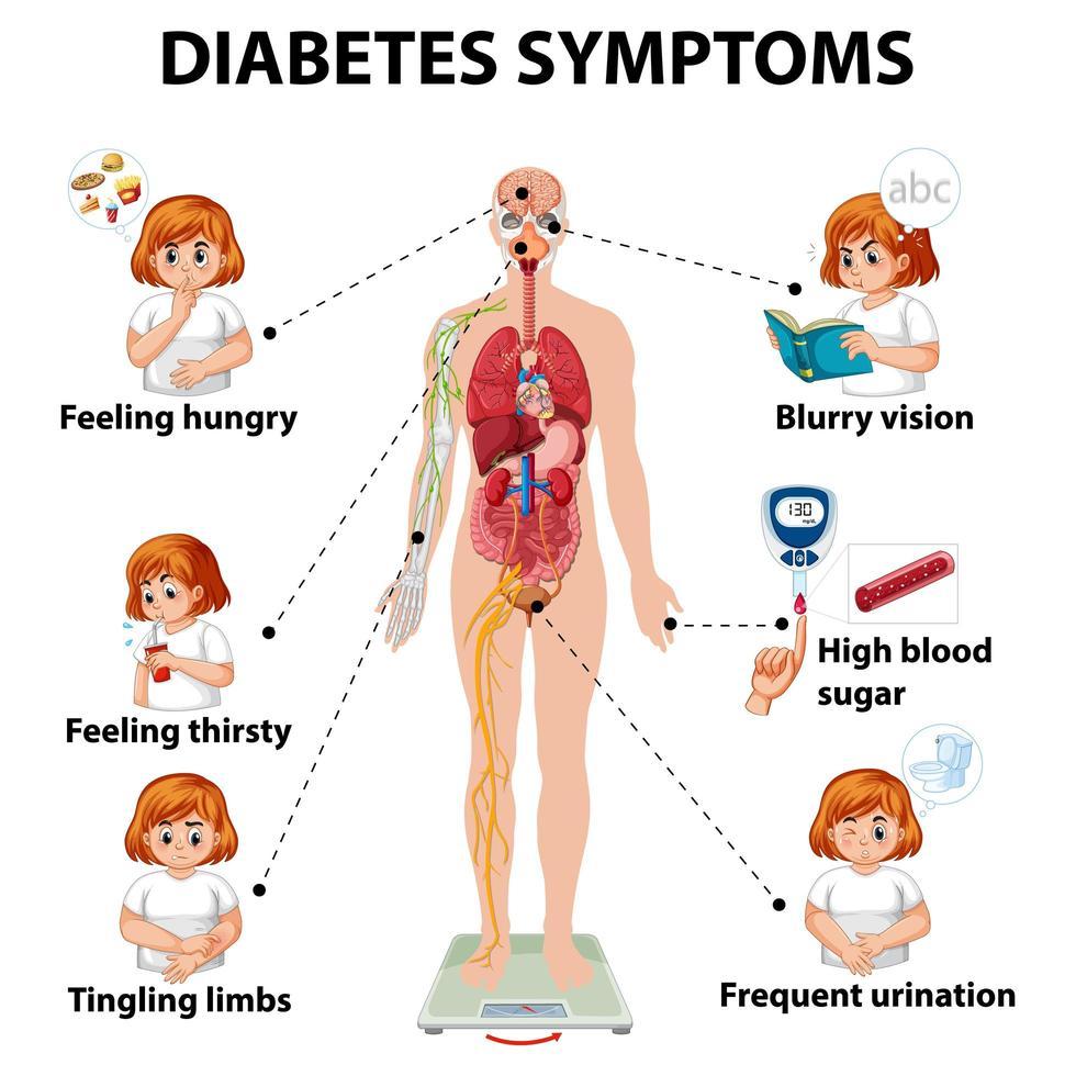 diabetes symptomen infographic vector