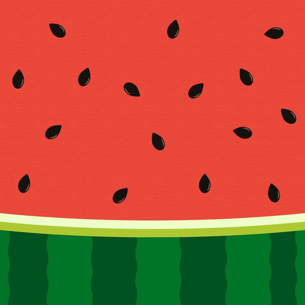 watermeloen plak achtergrond met zaad en huidtextuur vector