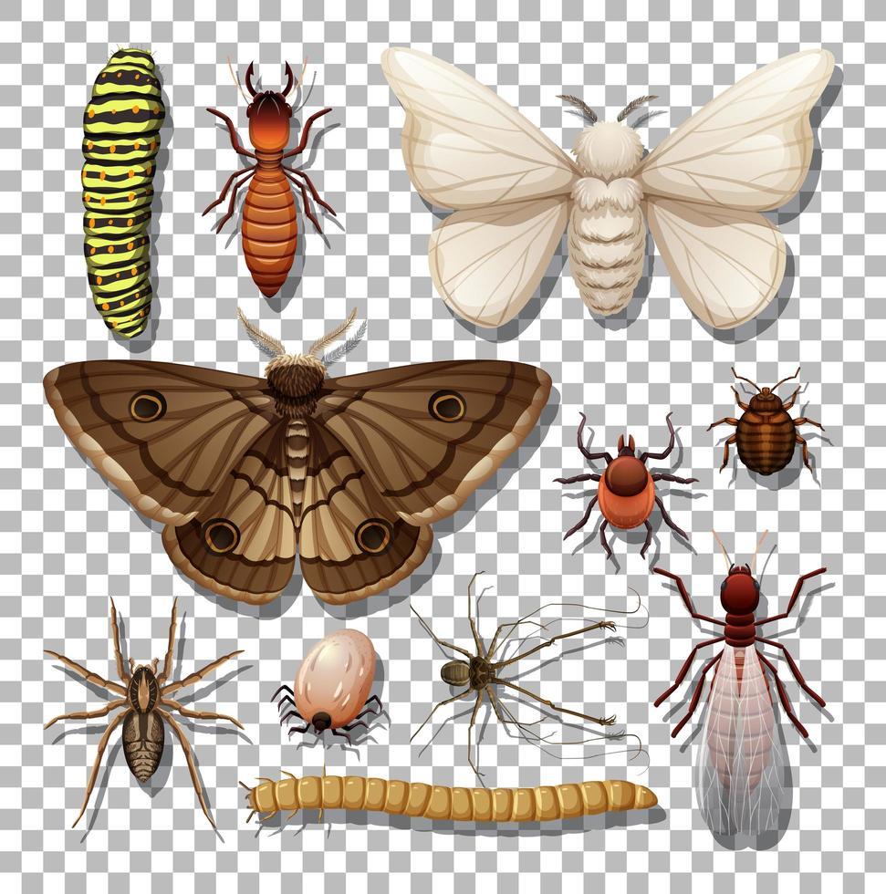 set van verschillende insecten geïsoleerd vector