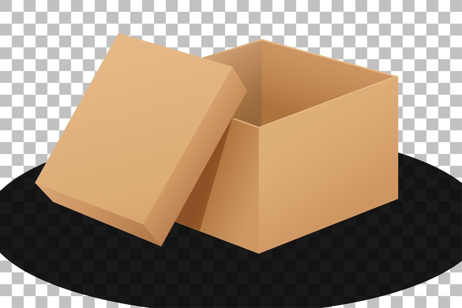 kartonnen doos geopend geïsoleerd vector