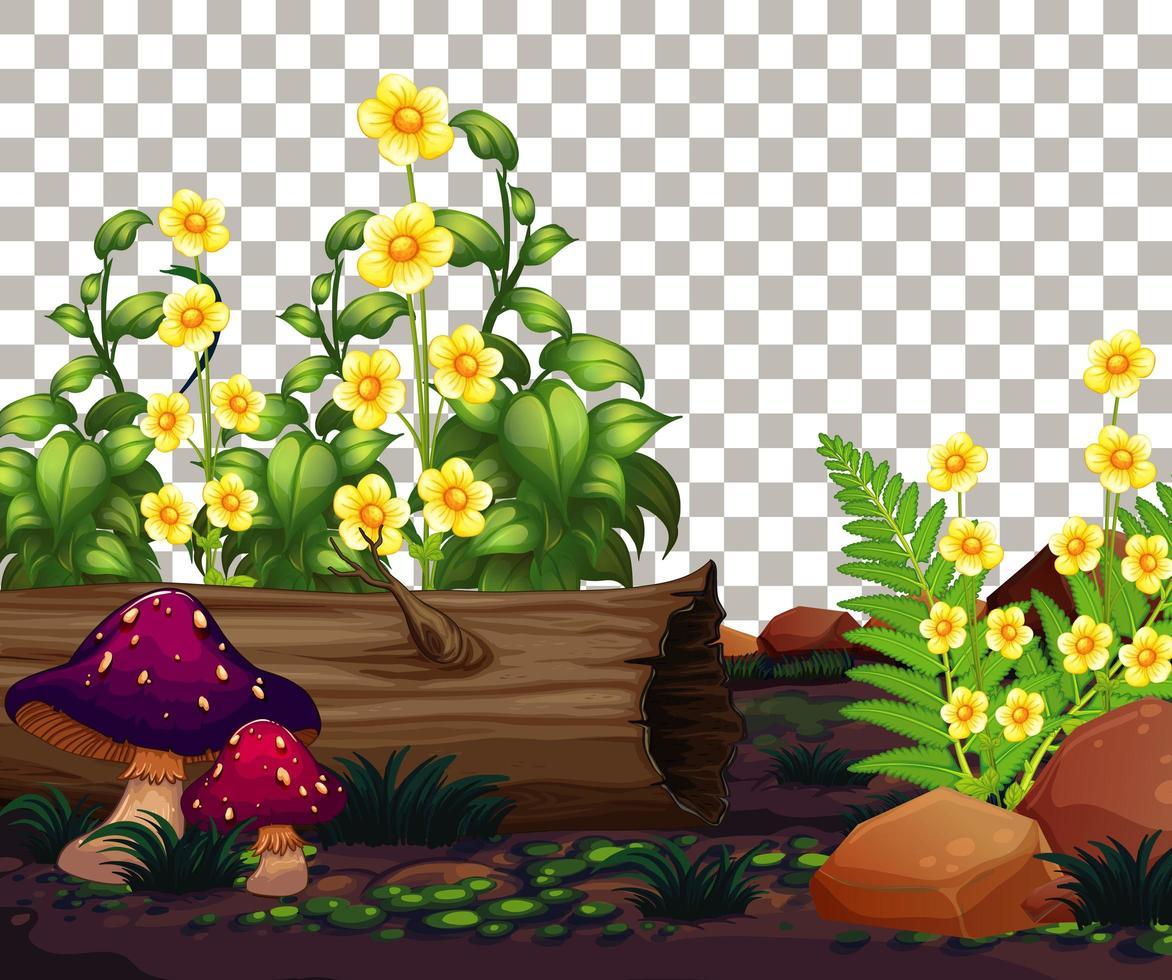 natuur buiten tuin scène close-up vector