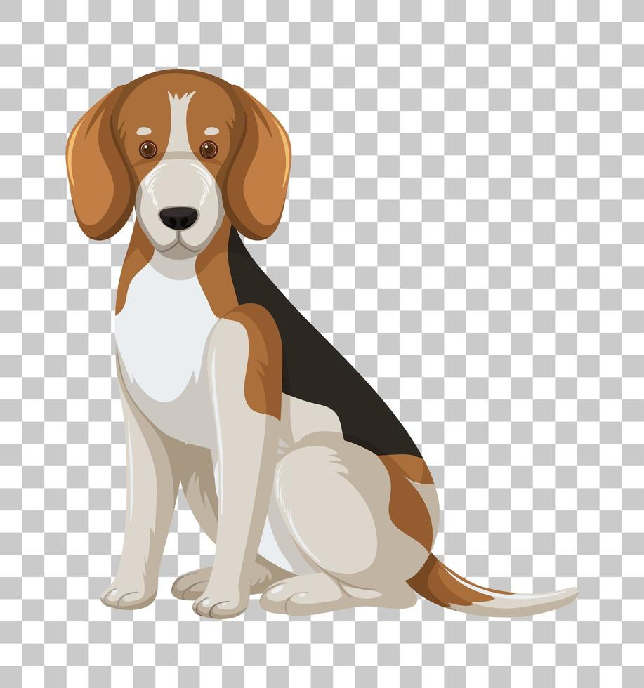 beagle in zittende positie stripfiguur geïsoleerd op transparante achtergrond vector