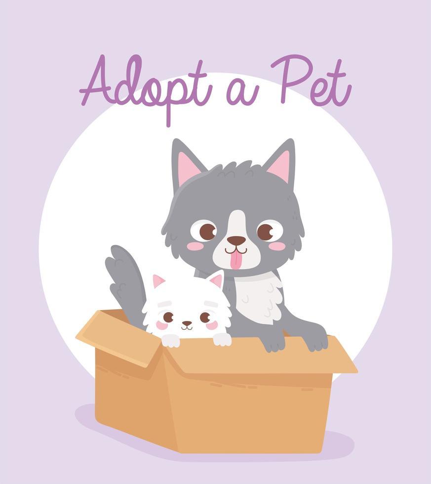 adoptie van huisdieren met schattige kleine katten vector