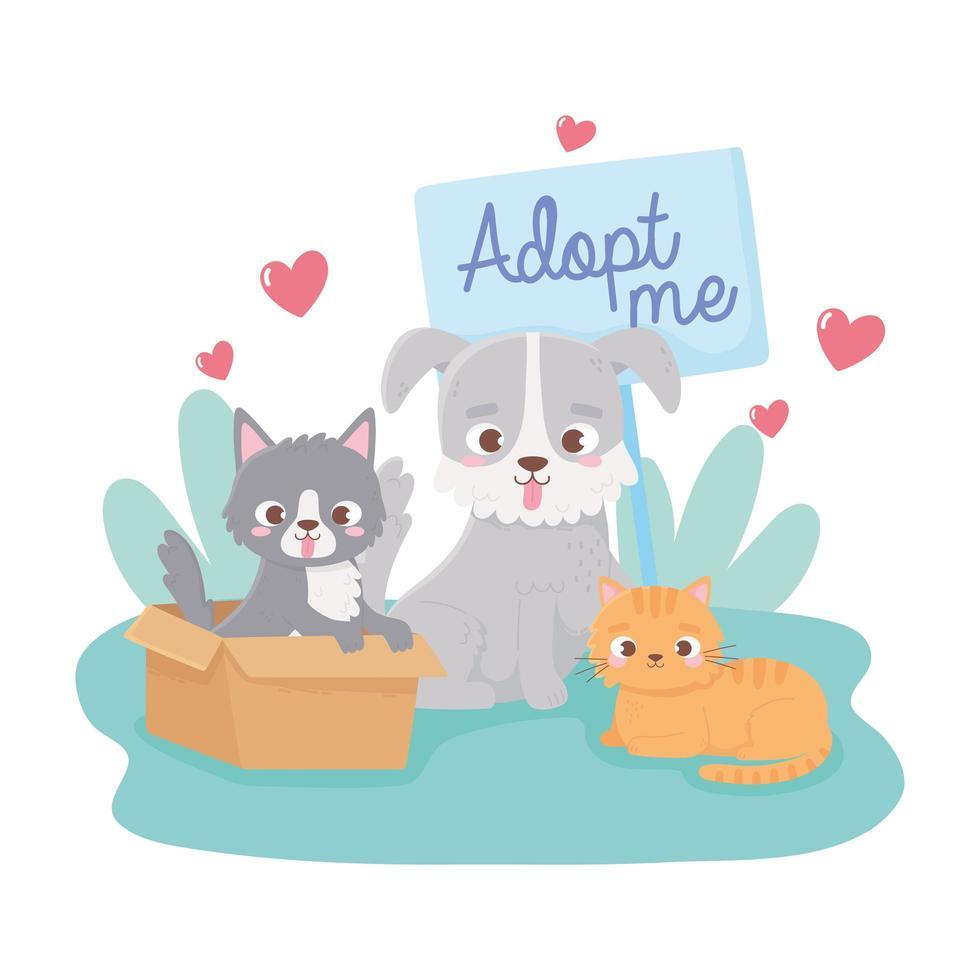 adoptie van huisdieren met schattige kleine katten en hond vector