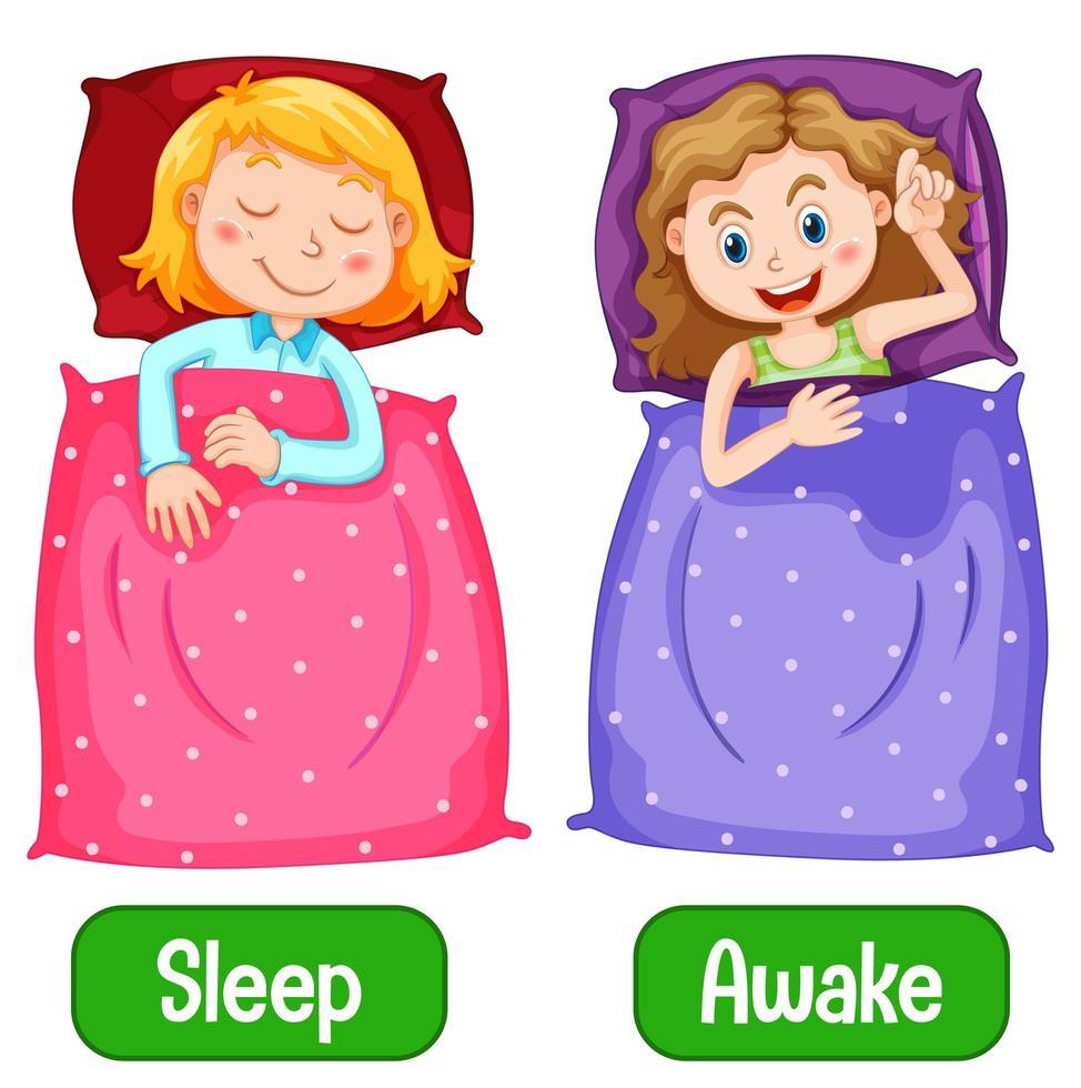 tegengestelde woorden met wakker en slapen vector