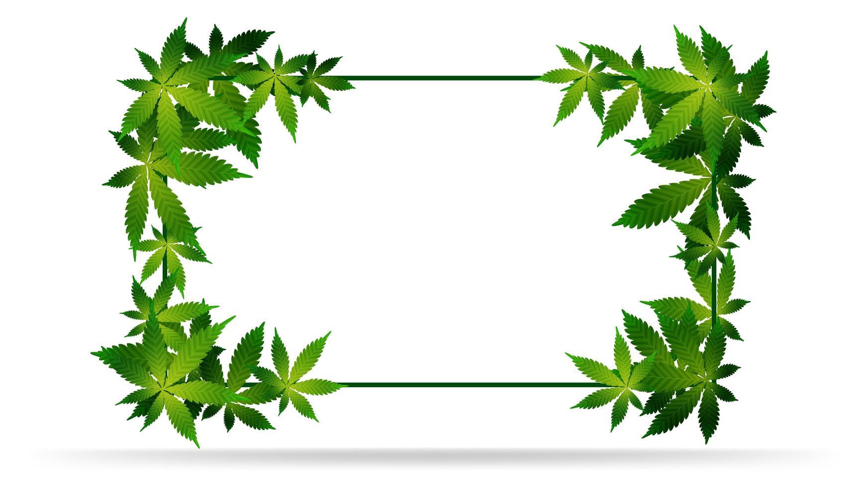 frame van groene cannabisbladeren. vector