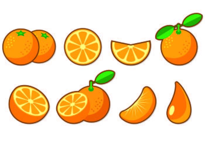 Set Van Clementine Fruit Icons vector