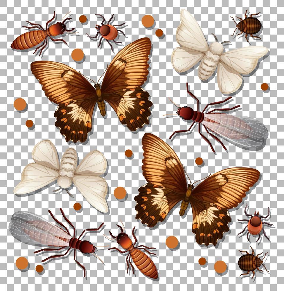 set van verschillende insecten op transparante achtergrond vector