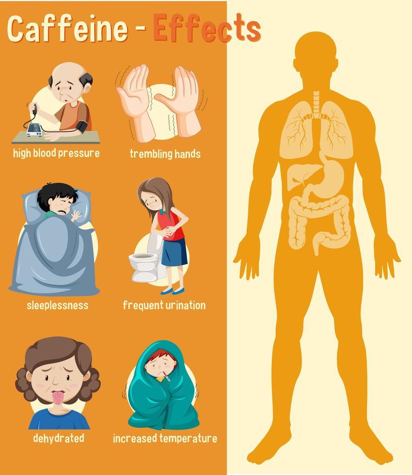 gezondheidseffecten van cafeïne infographic vector