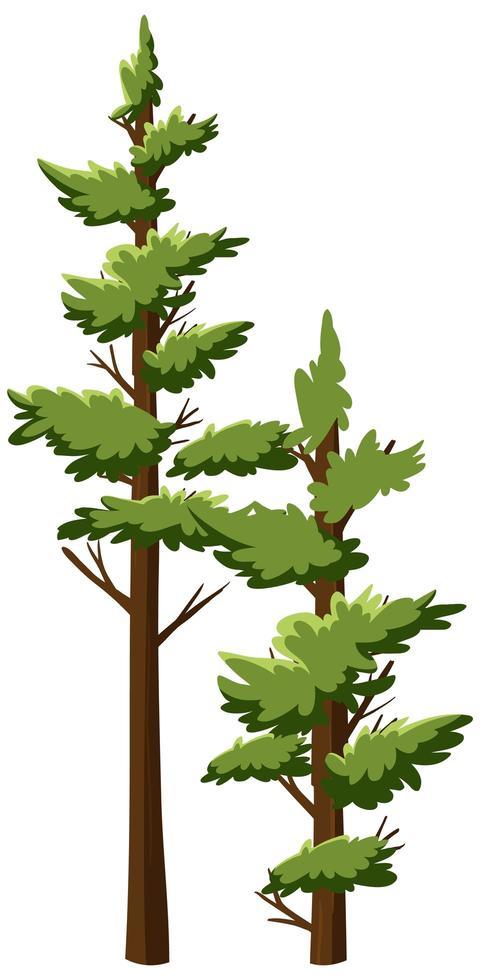 geïsoleerde bomen op witte achtergrond vector