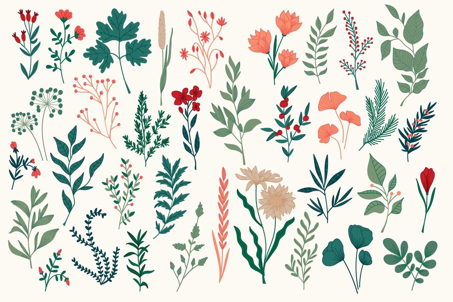 hand getekend kleurrijk botanisch ontwerppakket vector