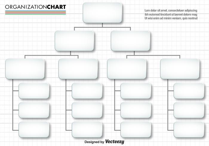 Vector Eenvoudige Organisatiekaart