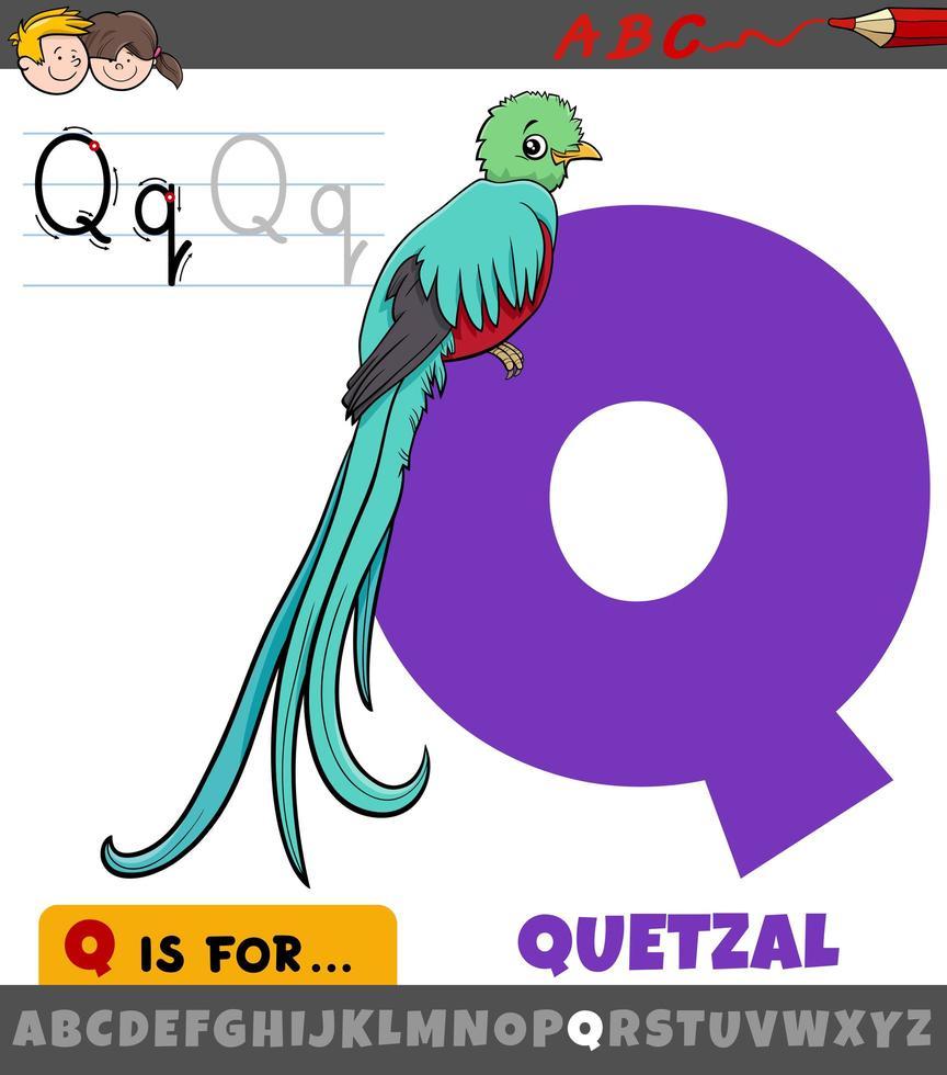 letter q uit alfabet met quetzal-vogelkarakter vector